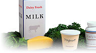 Dairy-Free Diet: Main Image