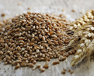 Diabetes Food Spotlight: Whole Grains: Main Image
