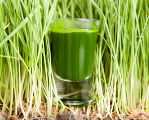 Drink to Your Health with Raw Green Smoothies: Main Image