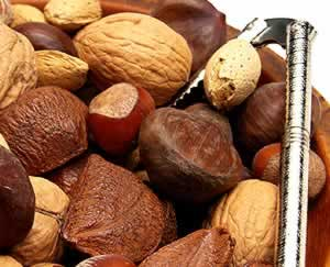 Wild About Nuts: Main Image