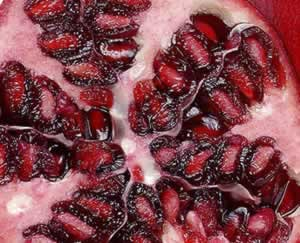 Exotic Fruits and Berries Boast Big Antioxidants: Main Image