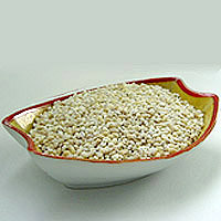 Barley: Main Image