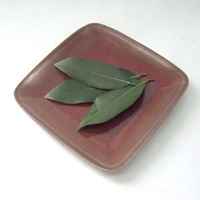 Bay Leaves: Main Image