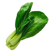 Bok Choy: Main Image