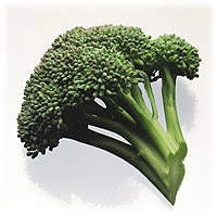 Broccoli: Main Image