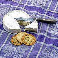 Camembert: Main Image