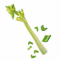 Celery: Main Image