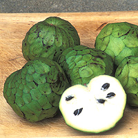 Cherimoya: Main Image