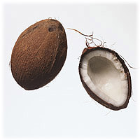 Coconuts: Main Image