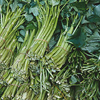 Collards: Main Image