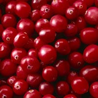 Cranberries: Main Image