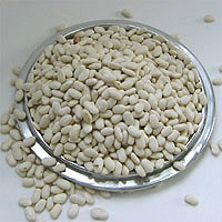 Great Northern Beans: Main Image