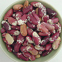 Jacob's Cattle Beans: Main Image
