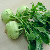Kohlrabi: Main Image