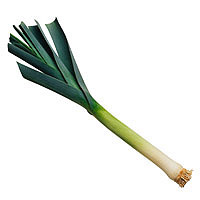 Leeks: Main Image