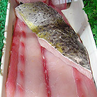 Mahi Mahi: Main Image