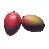 Mango: Main Image