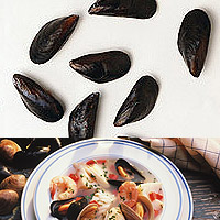 Mussels: Main Image