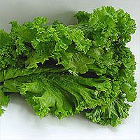 Mustard Greens: Main Image