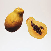 Papaya: Main Image