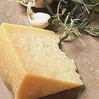 Parmesan: Main Image