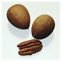 Pecans: Main Image