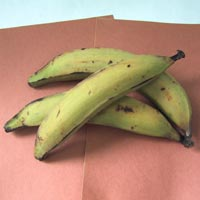 Plantains: Main Image
