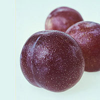 Plums: Main Image