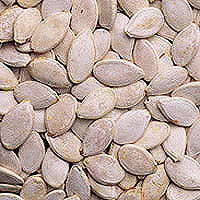 Pumpkin Seeds: Main Image