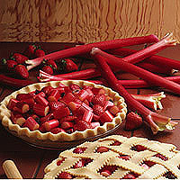 Rhubarb: Main Image