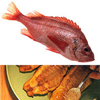 Rockfish: Main Image