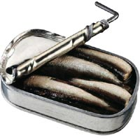 Sardines: Main Image