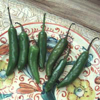 Serrano Pepper: Main Image