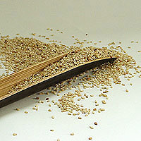 Sesame Seeds: Main Image