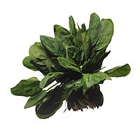 Spinach: Main Image