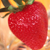 Strawberries: Main Image