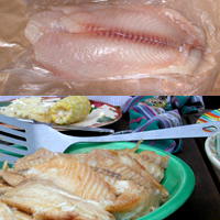 Tilapia: Main Image