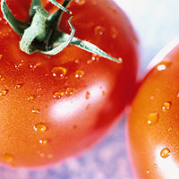 Tomatoes: Main Image