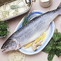 master.k.m.us.Trout Grocery Trends