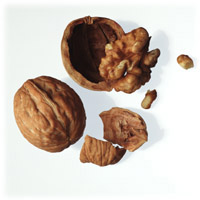 Walnuts: Main Image