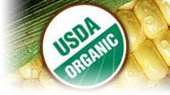 Understanding Organics: Labeling & Certification: Main Image