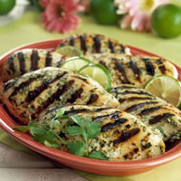 Grilled Chicken with Spicy Ginger Marinade: Main Image