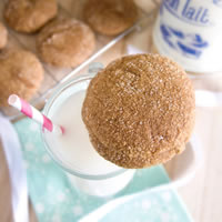 Fat-Free Gingerbread Cookies: Main Image