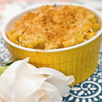 Roasted Butternut Squash and Goat Cheese Macaroni: Main Image