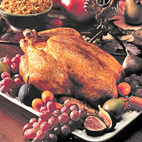 Roasted Chicken on a Bed of Winter Vegetables: Main Image