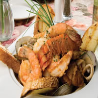 Baby Zuppa di Pesce: Main Image