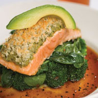 Ginger Salmon: Main Image