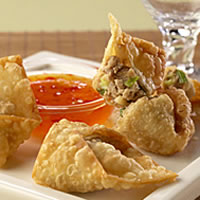 Easy Pork Won Tons: Main Image