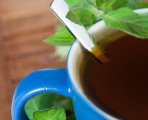 Herbal Help for Chronic Digestive Disorder: Main Image