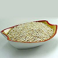 Barley: Main Image